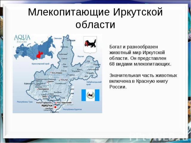 Млекопитающие Иркутской области