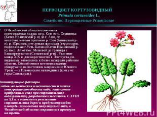 ПЕРВОЦВЕТ КОРТУЗОВИДНЫЙ  Primula cortusoides L.  Семейст