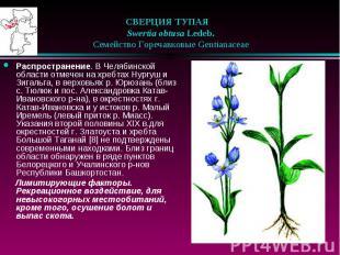 СВЕРЦИЯ ТУПАЯ Swertia obtusa Ledeb.  Семейство Гор