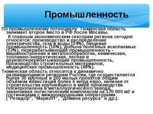 По промышленному потенциалу Тюменская область занимает второе место в РФ после М