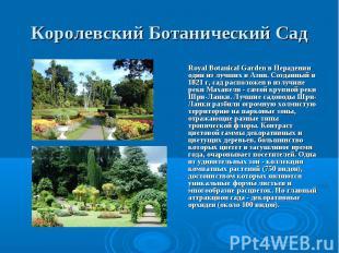 Royal Botanical Garden в Перадении один из лучших в Азии. Созданный в 1821 г, са