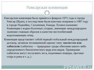 Рамсарская конвенция была принята в феврале 1971 года в городе Рамсар (Иран), в