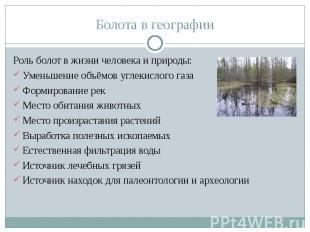 Роль болот в жизни человека и природы: Роль болот в жизни человека и природы: Ум