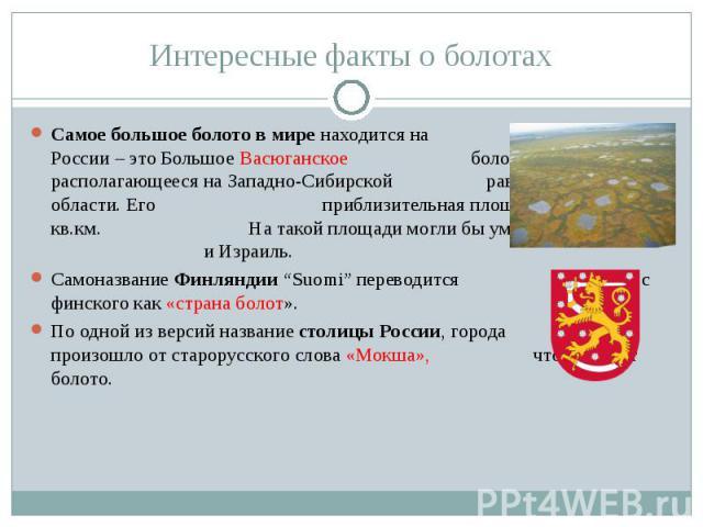 Самое большое болото в мире находится на территории России – это Большое Васюганское болото, располагающееся на Западно-Сибирской равнине, в Томской области. Его приблизительная площадь – 53000-55000 кв.км. На такой площади могли бы уместиться Бельг…