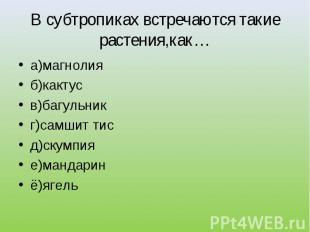 а)магнолия а)магнолия б)кактус в)багульник г)самшит тис д)скумпия е)мандарин ё)я