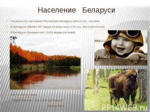Население Беларуси Численность населения Республики Беларусь-9469,9 тыс. человек