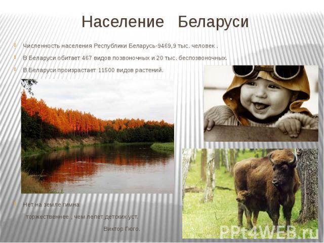 Население Беларуси Численность населения Республики Беларусь-9469,9 тыс. человек . В Беларуси обитает 467 видов позвоночных и 20 тыс. беспозвоночных. В Беларуси произрастает 11500 видов растений. Нет на земле гимна торжественнее , чем лепет детских …
