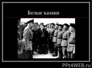 Белые казаки