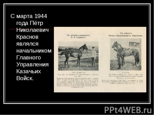 С марта 1944 года Пётр Николаевич Краснов являлся начальником Главного Управления Казачьих Войск. С марта 1944 года Пётр Николаевич Краснов являлся начальником Главного Управления Казачьих Войск.