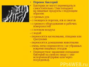 Перенос бактерий Перенос бактерий Бактерии немогут перемещаться самостояте