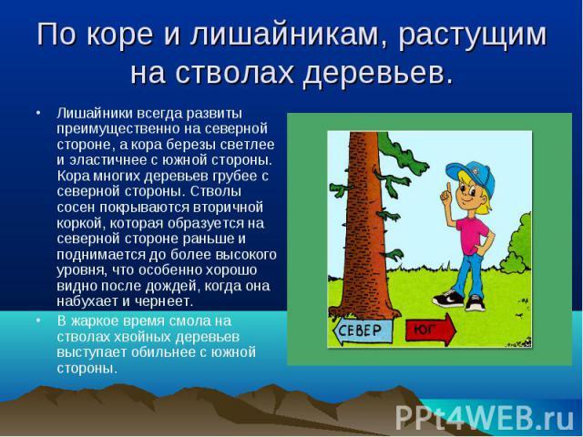 Лишайники всегда развиты преимущественно на северной стороне, а кора березы светлее и эластичнее с южной стороны. Кора многих деревьев грубее с северной стороны. Стволы сосен покрываются вторичной коркой, которая образуется на северной стороне раньш…