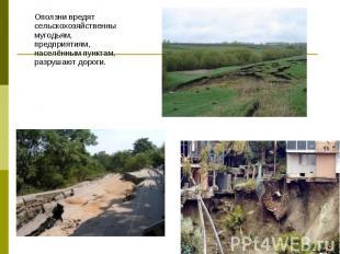 Оползни вредят сельскохозяйственнымугодьям, предприятиям, населённым пунктам, ра