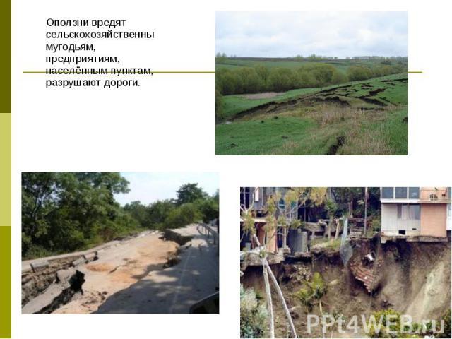 Оползни вредят сельскохозяйственнымугодьям, предприятиям, населённым пунктам, разрушают дороги. Оползни вредят сельскохозяйственнымугодьям, предприятиям, населённым пунктам, разрушают дороги.