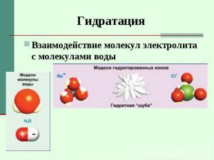 Взаимодействие молекул электролита с молекулами воды Взаимодействие молекул элек