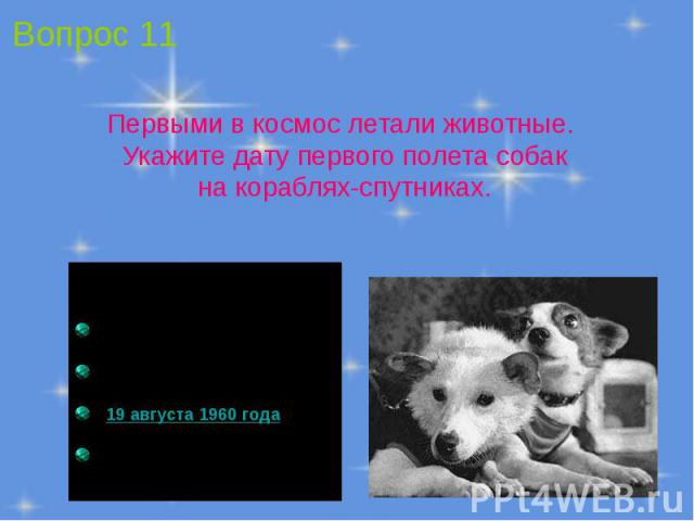 Первыми в космос летали животные. Укажите дату первого полета собак на кораблях-спутниках.