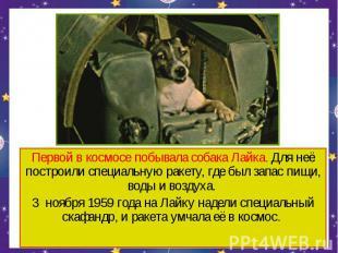 Первой в космосе побывала собака Лайка. Для неё построили специальную ракету, гд