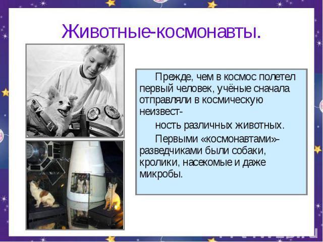 Животные-космонавты. Прежде, чем в космос полетел первый человек, учёные сначала отправляли в космическую неизвест- ность различных животных. Первыми «космонавтами»-разведчиками были собаки, кролики, насекомые и даже микробы.