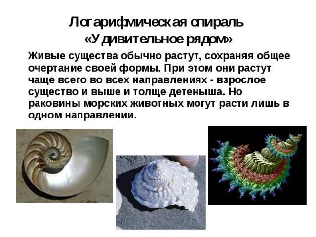 Живые существа обычно растут, сохраняя общее очертание своей формы. При этом они растут чаще всего во всех направлениях - взрослое существо и выше и толще детеныша. Но раковины морских животных могут расти лишь в одном направлении. Живые существа об…