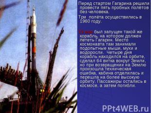 Перед стартом Гагарина решили провести пять пробных полётов без человека. Перед