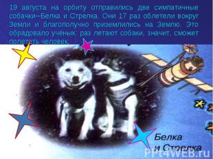 19 августа на орбиту отправились две симпатичные собачки─Белка и Стрелка. Они 17