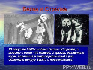 19 августа 1960 г.собаки Белка и Стрелка, а вместе с ними - 40 мышей, 2 крысы, р