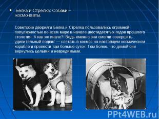 Белка и Стрелка: Собаки – космонавты. Белка и Стрелка: Собаки – космонавты.
