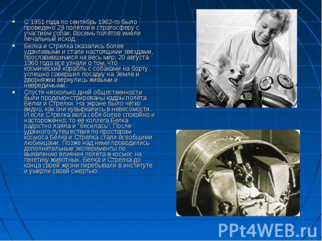С 1951 года по сентябрь 1962-го было проведено 29 полётов в стратосферу с участием собак. Восемь полётов имели печальный исход. С 1951 года по сентябрь 1962-го было проведено 29 полётов в стратосферу с участием собак. Восемь полётов имели печальный …