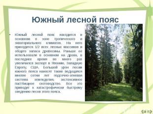 Южный лесной пояс находится в основном в зоне тропического и экваториального кли