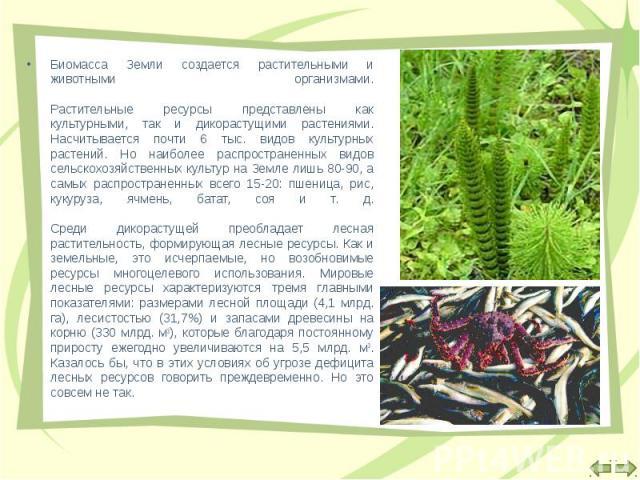Биомасса Земли создается растительными и животными организмами. Растительные ресурсы представлены как культурными, так и дикорастущими растениями. Насчитывается почти 6 тыс. видов культурных растений. Но наиболее распространенных видов сельскохозяйс…