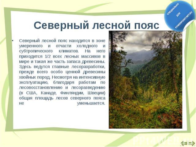 Северный лесной пояс находится в зоне умеренного и отчасти холодного и субтропического климатов. На него приходится 1/2 всех лесных массивов в мире и такая же часть запаса древесины. Здесь ведутся главные лесоразработки, прежде всего особо ценной др…