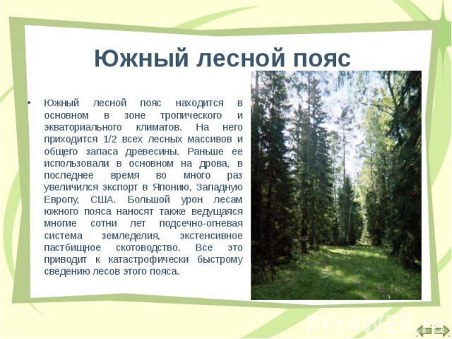 Южный лесной пояс находится в основном в зоне тропического и экваториального климатов. На него приходится 1/2 всех лесных массивов и общего запаса древесины. Раньше ее использовали в основном на дрова, в последнее время во много раз увеличился экспо…