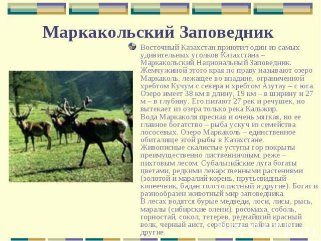 Восточный Казахстан приютил один из самых удивительных уголков Казахстана – Маркакольский Национальный Заповедник. Жемчужиной этого края по праву называют озеро Маркаколь, лежащее во впадине, ограниченной хребтом Кучум с севера и хребтом Азутау – с …