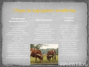 Отрасли народного хозяйства