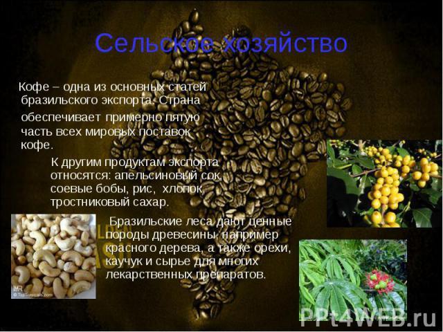 Кофе – одна из основных статей бразильского экспорта. Страна обеспечивает примерно пятую часть всех мировых поставок кофе. Кофе – одна из основных статей бразильского экспорта. Страна обеспечивает примерно пятую часть всех мировых поставок кофе.