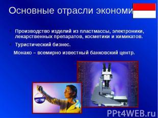Основные отрасли экономики: Производство изделий из пластмассы, электроники, лек