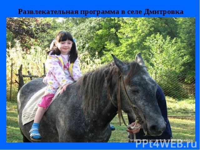 Катание на лошадях Катание на лошадях