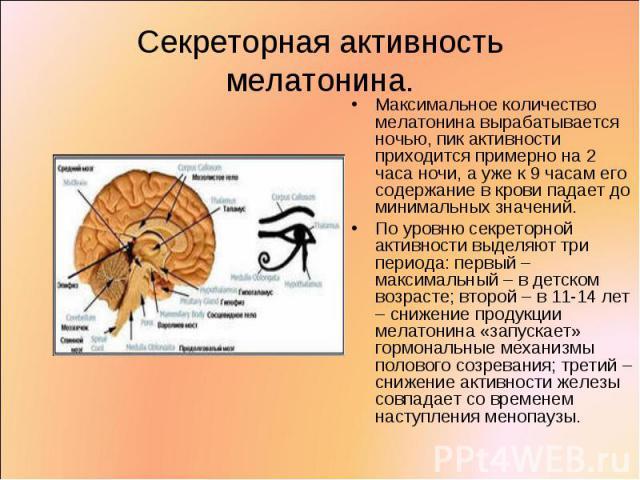 Максимальное количество мелатонина вырабатывается ночью, пик активности приходится примерно на 2 часа ночи, а уже к 9 часам его содержание в крови падает до минимальных значений. Максимальное количество мелатонина вырабатывается ночью, пик активност…