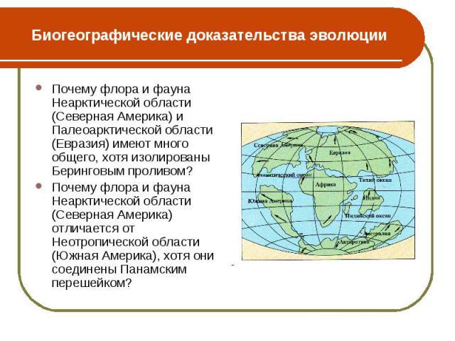 Почему флора и фауна Неарктической области (Северная Америка) и Палеоарктической области (Евразия) имеют много общего, хотя изолированы Беринговым проливом? Почему флора и фауна Неарктической области (Северная Америка) и Палеоарктической области (Ев…