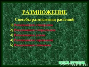 Способы размножения растений: Способы размножения растений: 1) Размножение отвод