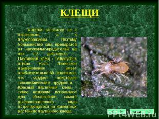 КЛЕЩИ относятся не к насекомым, а к паукообразным. Поэтому большинство хим. преп