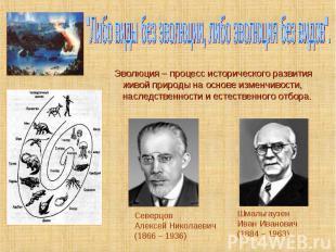 Эволюция – процесс исторического развития живой природы на основе изменчивости,