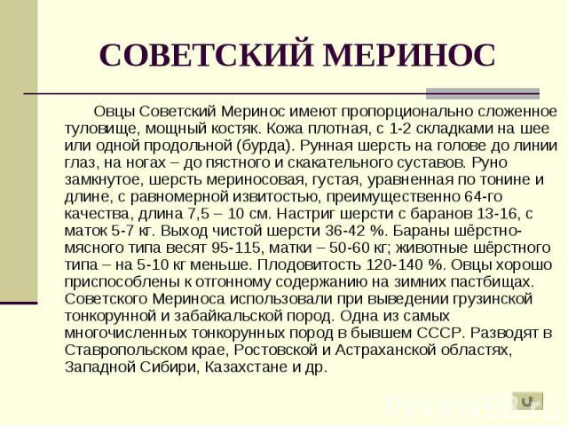 Овцы Советский Меринос имеют пропорционально сложенное туловище, мощный костяк. Кожа плотная, с 1-2 складками на шее или одной продольной (бурда). Рунная шерсть на голове до линии глаз, на ногах – до пястного и скакательного суставов. Руно замкнутое…