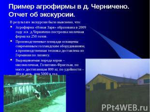 Пример агрофирмы в д. Черничено. Отчет об экскурсии. В результате экскурсии было