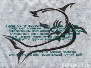 Вывод: Сотни миллионов лет природа отбирала среди акул организмы наиболее универ