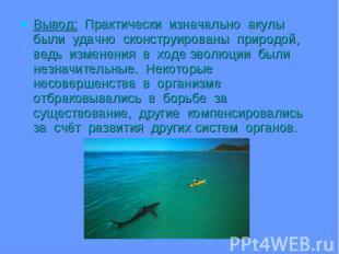 Вывод: Практически изначально акулы были удачно сконструированы природой, ведь и