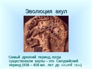 Самый древний период, когда существовали акулы – это Силурийский период (438 – 4