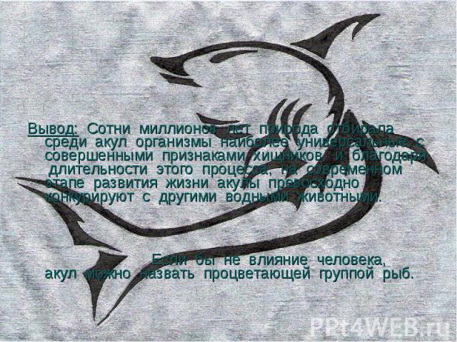 Вывод: Сотни миллионов лет природа отбирала среди акул организмы наиболее универсальные, с совершенными признаками хищников, и благодаря длительности этого процесса, на современном этапе развития жизни акулы превосходно конкурируют с другими водными…