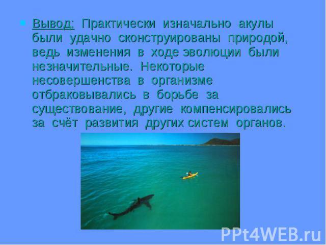 Вывод: Практически изначально акулы были удачно сконструированы природой, ведь изменения в ходе эволюции были незначительные. Некоторые несовершенства в организме отбраковывались в борьбе за существование, другие компенсировались за счёт развития др…