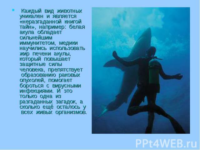 Каждый вид животных уникален и является «неразгаданной книгой тайн», например: белая акула обладает сильнейшим иммунитетом, медики научились использовать жир печени акулы, который повышает защитные силы человека, препятствует образованию раковых опу…