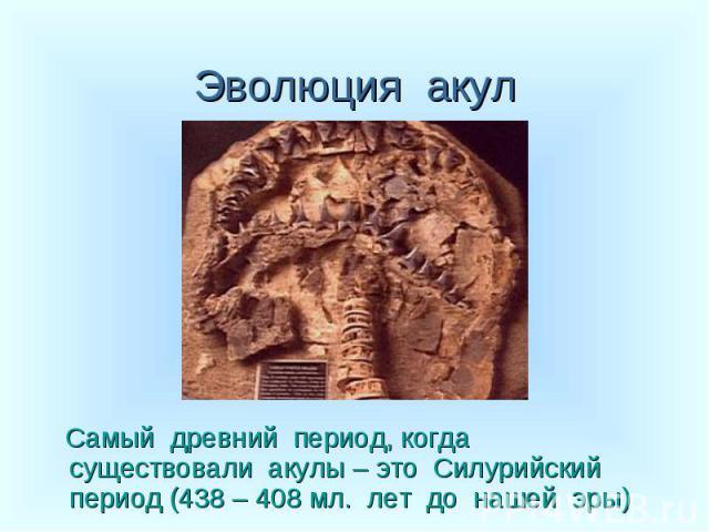 Самый древний период, когда существовали акулы – это Силурийский период (438 – 408 мл. лет до нашей эры)